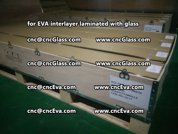 glass eva film packing for shipping by sea (17)